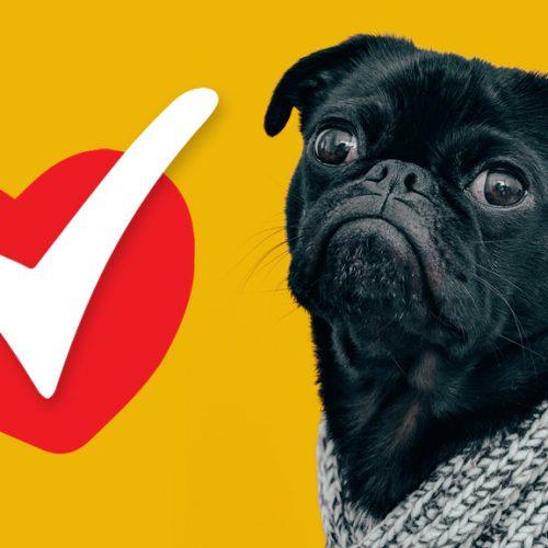 Critter Care Checklist